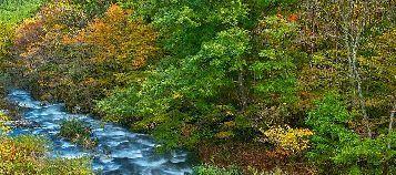 river_00011.jpg-1.jpg