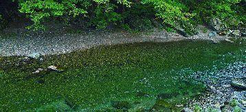river_00045.jpg-1.jpg