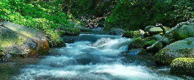 river_00006-1.jpg