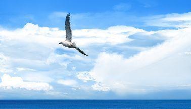 sea-ocean_00003-1.jpg